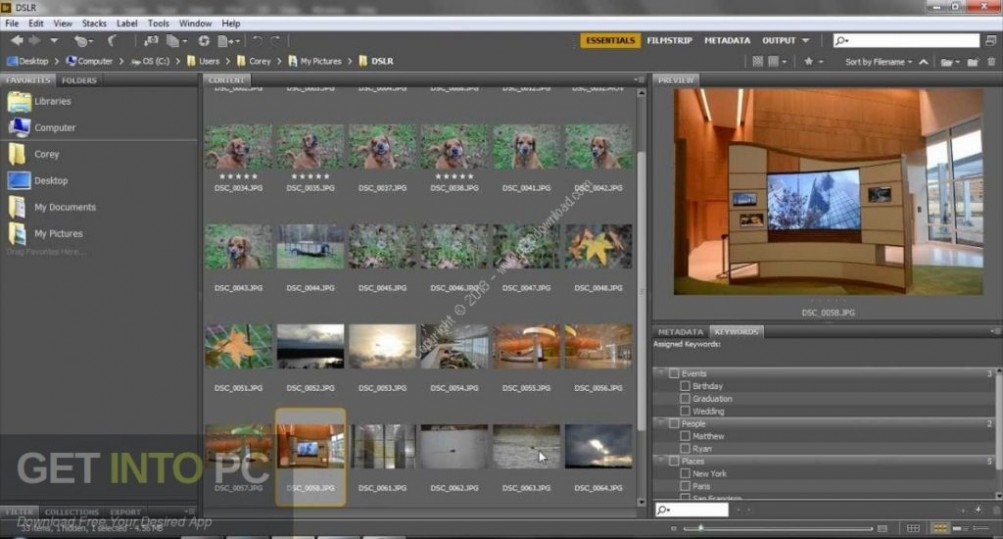 Adobe Bridge CC 2019 Latest Version Download-GetintoPC.com