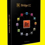 Adobe Bridge CC 2019 Free Download