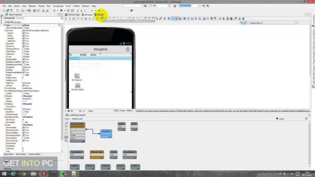 Embarcadero Delphi XE8 Direct Link Download-GetintoPC.com