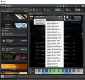 Sonuscore TO Strings of Winter (KONTAKT) Latest Version Download-GetintoPC.com