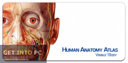 Visible Body Human Anatomy Atlas Software
